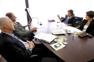 Reunião PSDB-Mulher